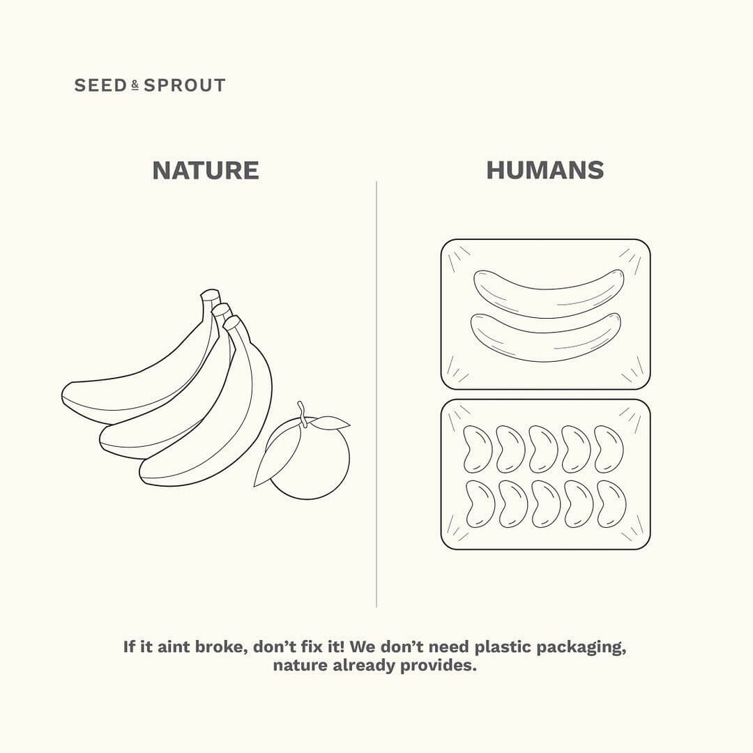Seed and Sprout sustainability tips